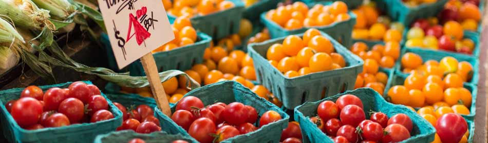 Farmers Markets, Farm Fresh Produce, Baked Goods, Honey in the Perkasie, Bucks County PA area